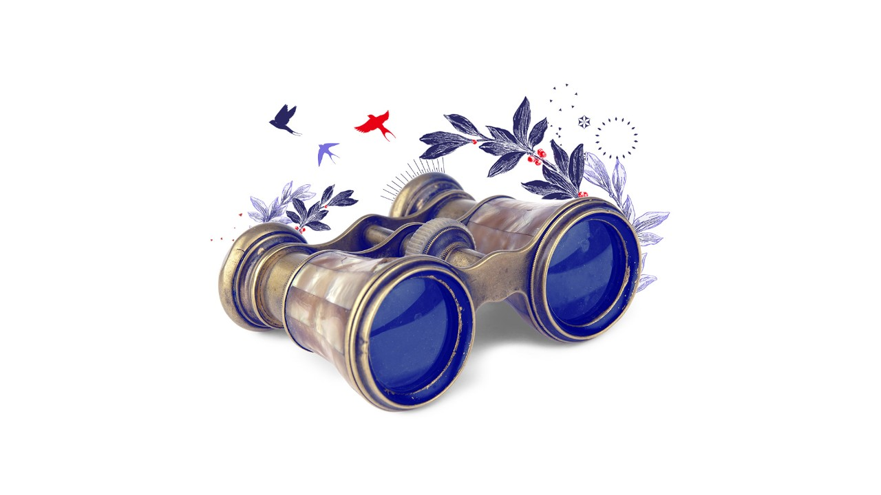 illustration of gold-coloured binoculars and birds; HSBC International Services Premier privileges page